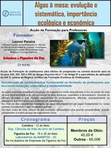 Algas_Grande Final