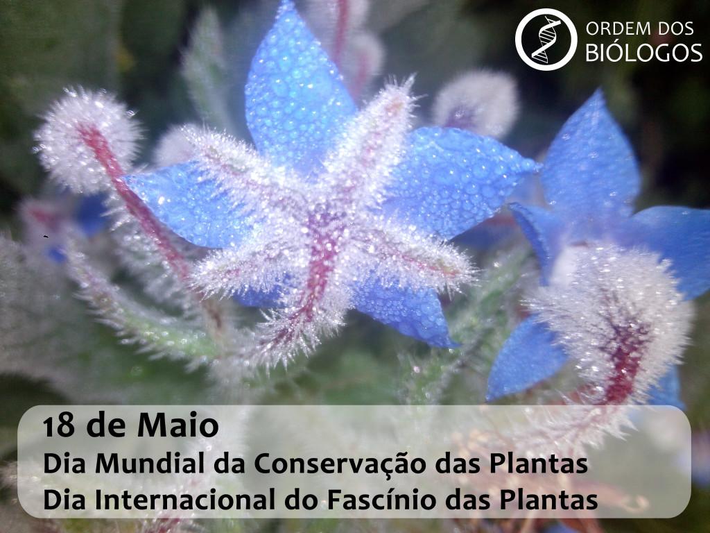 Dia Mundial da Conservação das Plantas2017
