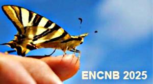 ENCNB