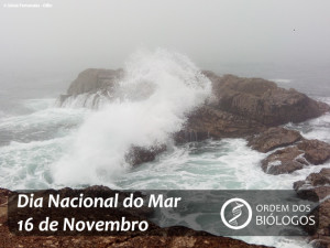 Dia Nacional do Mar 2017